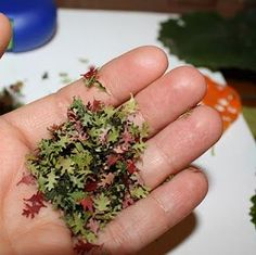 "The PURE Gardener, Inc.: How to Make ""Real"" Miniature Fall Leaves from REAL LEAVES"