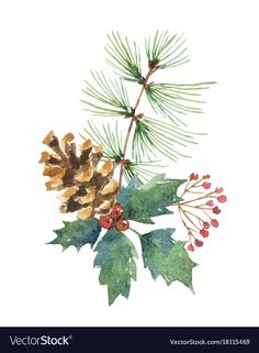Watercolor christmas bouquet with pine cone Vector Image , Watercolor Christmas Cards, Christmas Drawing, Christmas Paintings, Watercolor Cards, Watercolor Illustration, Watercolor Flowers, Watercolor Paintings, Watercolors, Merry Christmas Vector