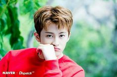 Naver dispatch - mark