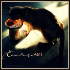 classy-cat-dishes-art-quote-eating