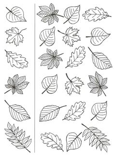 Feuille auto me Autumn Crafts, Autumn Art, Thanksgiving Crafts, Autumn Leaves, Art For Kids, Crafts For Kids, Leaf Template, Halloween Drawings, Flower Doodles