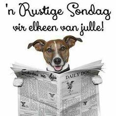 Goeie More, Sunday, Van, Storage, Words, Purse Storage, Domingo, Vans, Horse