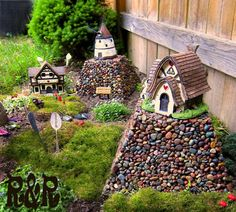 Fairy gardens in the garden.
