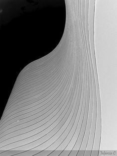https://flic.kr/p/4bcn16 | •°°• Edifício - curvas de Niemeyer •°°• |  Oscar Niemeyer (1907 - 2012)   Brincando de fazer arte com o que é, naturalmente, A Arte: Edifício Niemeyer, Praça da Liberdade, Belo Horizonte, Brasil.  View On Black