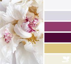flora tones color palette from Design Seeds Palettes Color, Colour Pallette, Colour Schemes, Color Combos, Color Patterns, Purple Palette, Design Seeds, Color Harmony, Color Balance