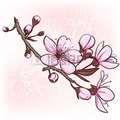 19601562-cherry-blossom-decorative-floral-illustration-of-sakura-flowers.jpg 450×450 pixels