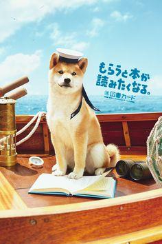 summer adventure /2013 夏/図書カード/poster/