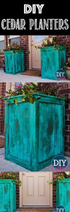 DIY Large Cedar Plants