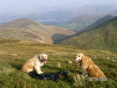 Highbridge Cottages:Self-catering, dog-friendly, green holiday cottage accommodation in Braithwaite, Keswick, in the English Lake District