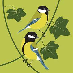 This is the illustration website of Rachel Hudson, Hampshire UK. Bird Drawings, Animal Drawings, Bird Illustration, Illustrations, Bird Graphic, Bird Pictures, Bird Design, Whimsical Art, Art Plastique