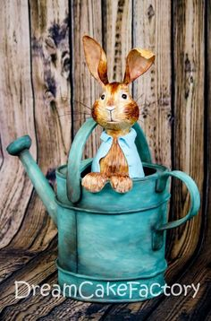Peter Rabbit, where are you?
