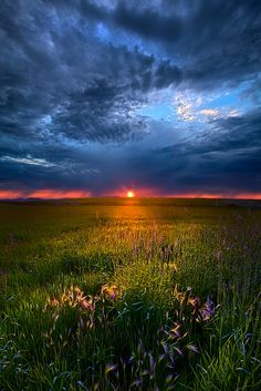 Revelations by Phil Koch on 500px