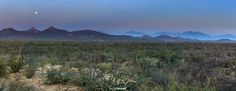 Two peaks in East Cape #josafatdelatoba #cabophotographer #loscabos  #eastcape #sanjosedelcabo #bajacaliforniasur #panoramic #mexico #landscape San Jose Del Cabo, East Cape, Baja California Sur, Land Scape, Mexico, Mountains, Nature, Wedding, Travel