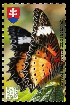 World Thinking Day, Bug Art, Vintage Stamps, Stamp Collecting, My Stamp, Chinese Art, Moth, Flora, Butterfly