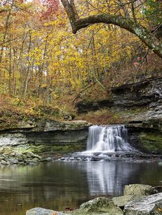 McCormick's Creek Falls, Indiana ... Our elementary school took every sixth grade class here for a weeklong camping trip every spring. We'd go wading in the river, spelunking & all sorts of fun things! Do schools do things like that any more.