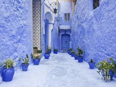 Blue Painted Alley Lined With Flower Pots Leading to Doorway, Chefchaouen, Morocco, North Africa Photographic Print by Guy Edwardes at Art.com