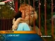 Amazing Video Of A Lion Hugging The Woman Who Rescued Him