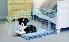 Groupon - ProValu Pet Crates or SnoZZy Crate Bumper Beds (Up to 36% Off). Two Colors Available. Free Shipping and Returns.. Groupon deal price: $22.99
