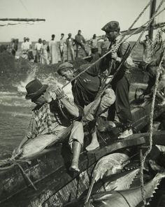 The number one resource for Fishing gear and information Great Photos, Old Photos, Vintage Photos, Cool Pictures, Fishing Photography, Vintage Photography, Algarve, Nostalgic Pictures, String Art