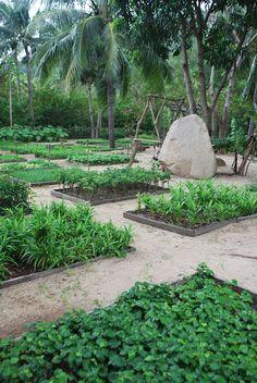 Herb garden... Would love a garden like thiiiiis!!!!