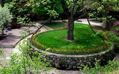 Courtyard of University of Michigan business school in spring.