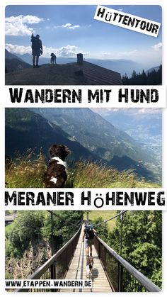 Hiking the Meraner Höhenweg with a dog - But it is not always easy to take your dog with you on a hike in the Alps. There may be many unders - Camping And Hiking, Camping Hacks, Backpacking Europe, Bora Bora, Belfast, Belize, Charleston Sc, Bangkok, Four Legged