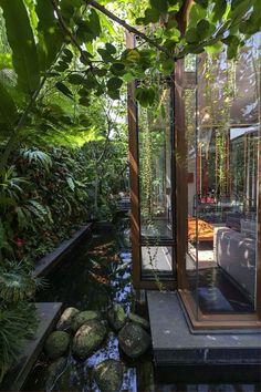 Koi Pond, but instead extend the house outward bringing the outside in, Planted 'wall', Koi & All ~jjl
