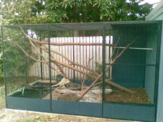 water monitor cage | New Mertens Water Monitor Enclosure - Aussie Pythons & Snakes