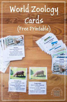 Free printable World Zoology Cards