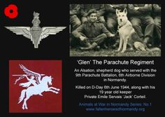 military dog are heros too. this fallen military dog died june 1944 along with his 19 year old owner. we respect him and his battle buddy for their bravery in the battle of d-day. Hesperia, CA in California Parachute Regiment, In Remembrance Of Me, American Cemetery, 101st Airborne Division, Dog Died, Half Square Triangle Quilts, Military Dogs, Fallen Heroes, Real Hero