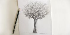 how-to-draw-a-tree-drawing-creation. Dark Art Drawings, Pencil Drawings, Tree Sketches, Paper Drawing, Learn To Draw, Art Boards, My Arts, Pastel, Fine Art