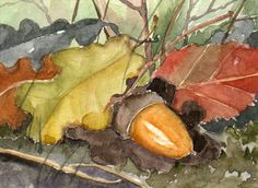 Acorn and leaves Aceo original watercolor painting by RougeBaie, €14.00