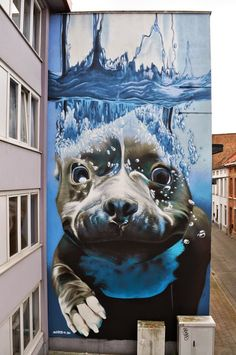 Taken from a photograph of an underwater dog. Done  on a building wall in chalk. Smates from Belgium...