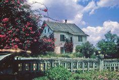 https://flic.kr/p/ek9gm4   Dalat villa    vas064090 Warren G. Reed Collection
