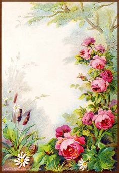 Vintage Field Garden Illustrated Border Flowers in a Victorian