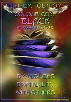 Black mixed with purple Feather - Symbolizes spirituality with others