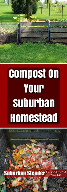 Compost is a wonderf