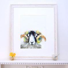 Lola Design Sheep Fine Art Print