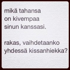 TOI - taide on ikuista: kissanhiekkaa (22.11.2014)