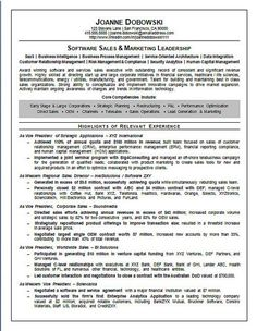 software sales executive resume example