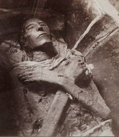 Mummy of Pharaoh Menmaatre Seti I, who was a pharaoh of the New Kingdom 19th.