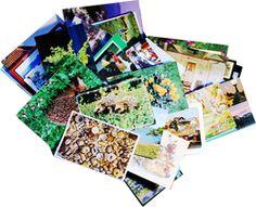 digital bildsal, bilder på hög