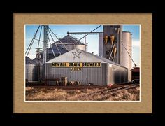 Newell Framed Print featuring the photograph Come Together by Marnie Patchett
