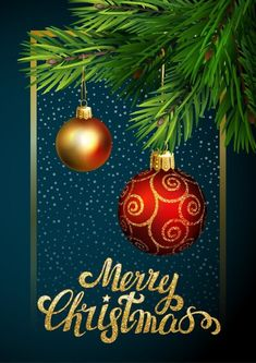 Are you looking for merry christmas greeting cards? We have come up with a handpicked collection of merry christmas and happy new year greeting cards. Christmas Wishes Greetings, Christmas Wishes Quotes, Merry Christmas Photos, Merry Christmas And Happy New Year, Christmas Time, Printable Christmas Cards, Funny Christmas Cards, Funny Nursing, Nursing Quotes