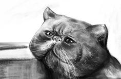 Emo Cat -_____-  #Black&white #DigitalPainting #Art #Cat