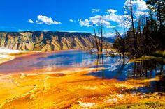 yellowstone - Pesquisa Google
