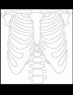 skeleton templates - Google Search