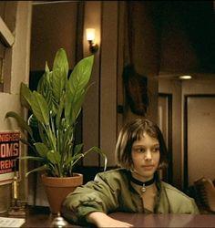 Plantas con flores azules - Id Plantae Euphorbia Milii, Echeveria, Indoor Garden, Indoor Plants, Dwyane Johnson, Sansevieria Trifasciata, Luc Besson, Natalie Portman, Dreadlocks