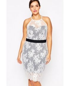Paper Dolls Plus Lace Overlay Halterneck Pencil Dress - Wedding Gowns Plus Size Cocktail Dresses, White Cocktail Dress, Plus Size Dresses, Plus Size Outfits, Nylons, Cheap Dresses, Sexy Dresses, Girls Dresses, Lace Dresses