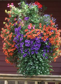 Hanging Basket. What a happy welcome over the front porch railing!  So pretty!!